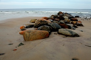 G Forss  Rocks like Seals  Plum Island small file