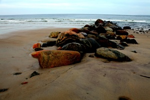 G Forss  Rocks like Seals  Plum Island P small file