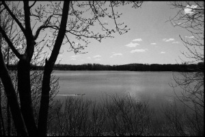 G Forss Mohawk River at Half Moon 35mm  2400 Nessy streaming along small file