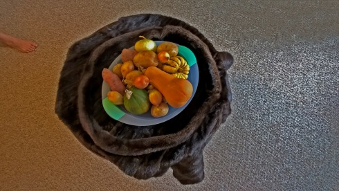 g-forss-farm-vegetables-for-soup-at-dhw-studio-small-file