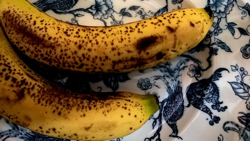 G Forss Two Bananas on a plate small file