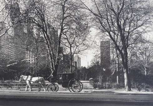 G Forss Hobar Gallery 1982 Central Park small file